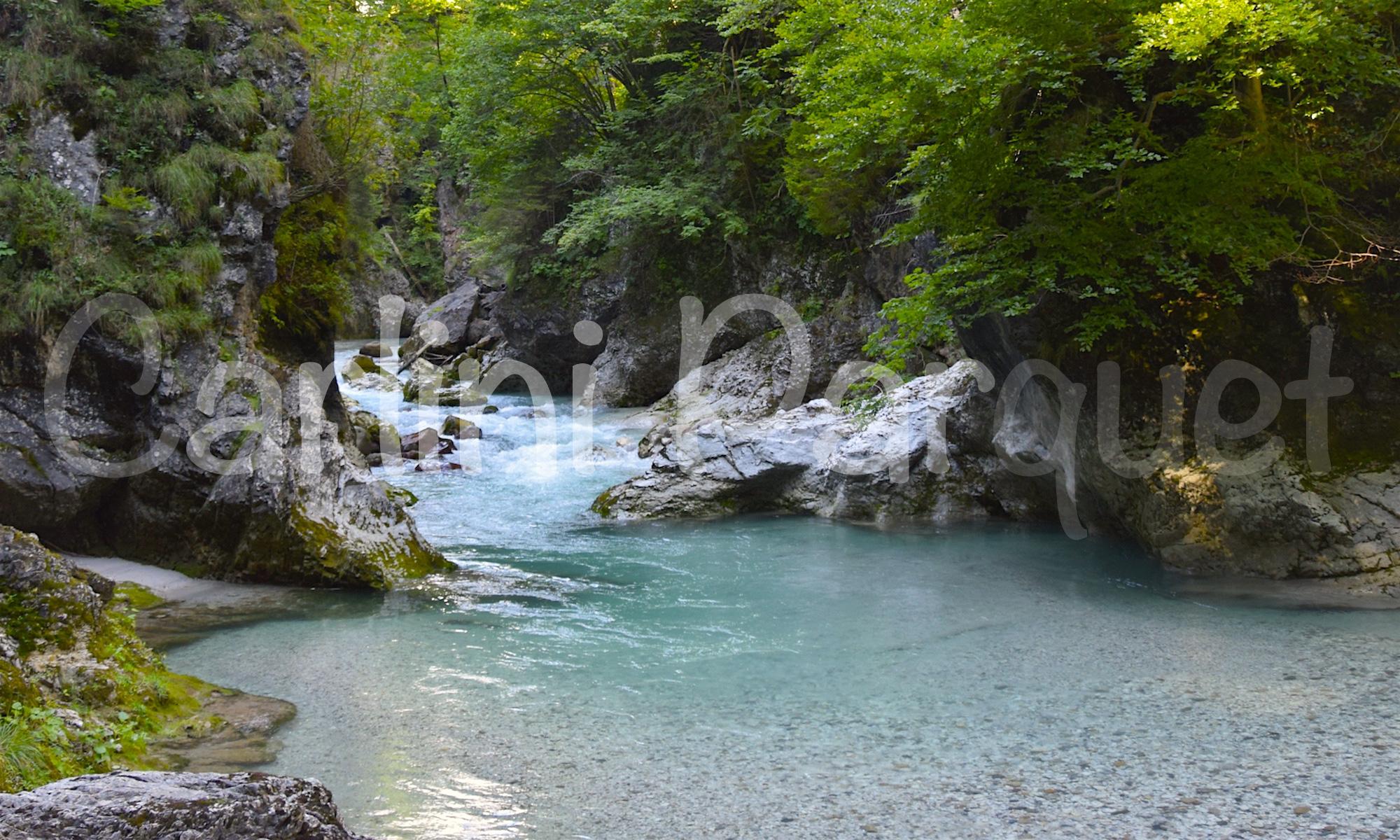 Carlini Parquet Naturale